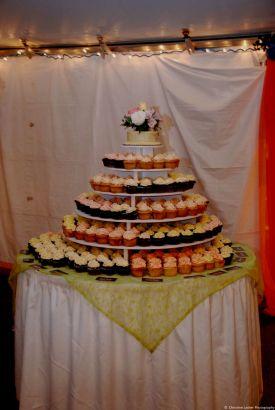Dessert buffet from our 2010 Summer Curtain Call.